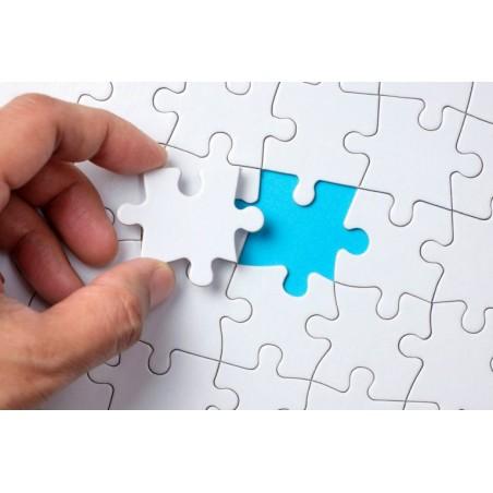 puzzle-carton-120pz-a4-200x290-brillo-pieza-sekaisa